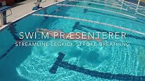 Streamline Legkick Stroke Breathing