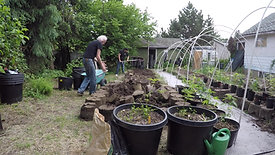 Outdoor Cannabis Cultivation
