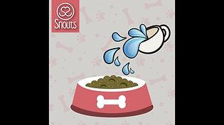 ¿Cómo preparar Snouts?