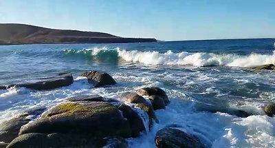 Mexia La Playa - Surf's Up!