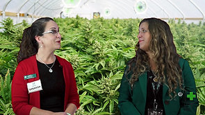 Inside the Grow Tent with Canna Care Docs, Ep. 12 with Catherine Lewis