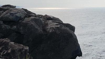 西因幡県立自然公園 長尾鼻