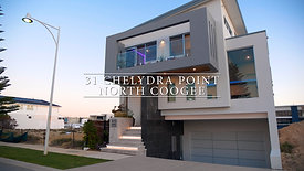31 Chelydra Point