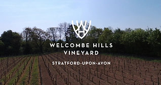 Welcombe Hills Vineyard Tour