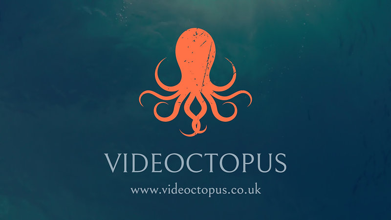 Videoctopus