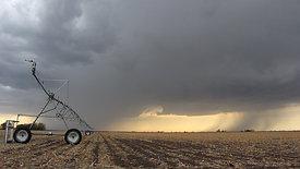 Rainstorm and Field