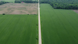 Agricultural Fields and Road
