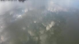Flyover Reflection