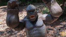 """King Kong Skull Island"" published on Walmart's Facebook"