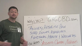 Why Try CBD? How Does it Work?