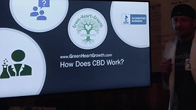 How Does CBD Potentially Work?