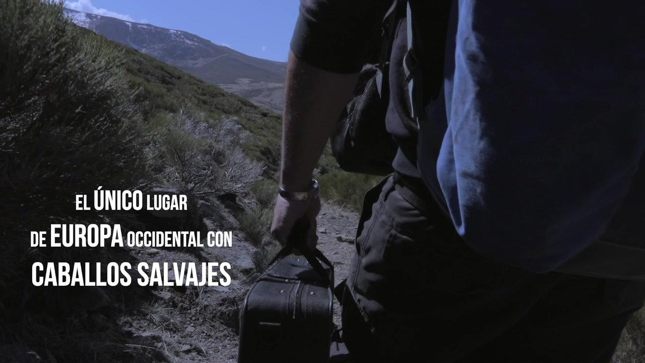 CABALLOS SALVAJES, HOMBRES SALVAJES