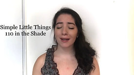Simple Little Things from 110 in the Shade - Alexandra Imbrosci-Viera
