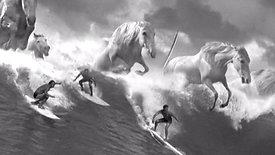 """Guinness """"Surfer"""""""