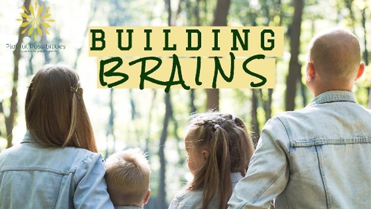Building Brains