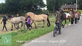 Heste rides på sommerfold - 2020