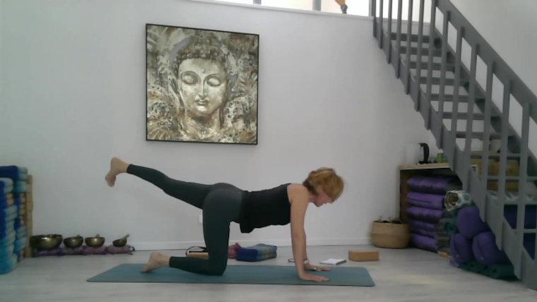 Cours de Yoga en Video