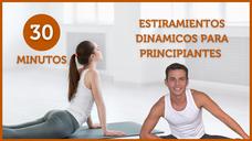 🐍ESTIRAMIENTOS DINÁMICOS para PRINCIPIANTES ✅ Ejercicios para todo el cuerpo