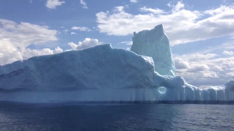 Icebergs - Our Frozen Visitors