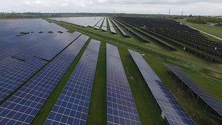Shotwick Solar Farm : Ground Maintenance