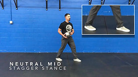 Neutral Stagger Stances