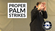 Your First Combative Palm Strikes