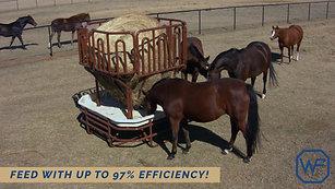 Western Pro Feeder - Horses