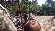 Route de la Roque Alric