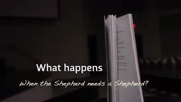 What Happens When a Shepherd Needs a Shepherd?