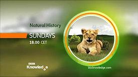 Natural History on Sundays