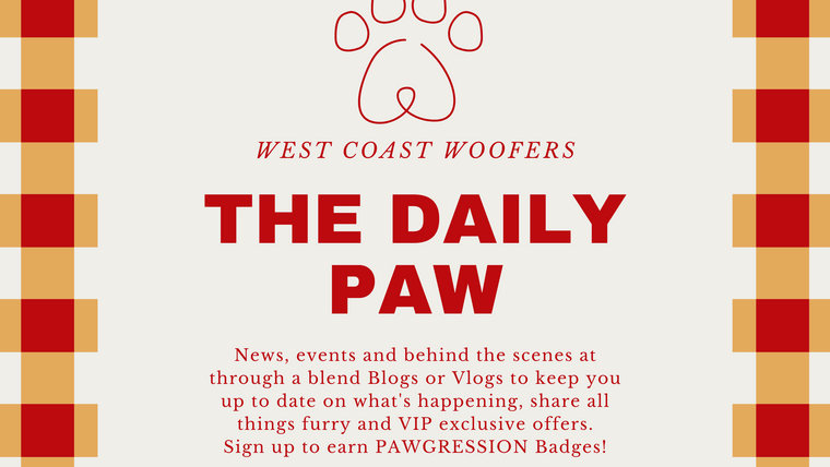 The Daily Paw