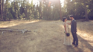 Yosemite CA Wedding Video