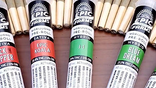 Epic Pre-Rolls Are Here