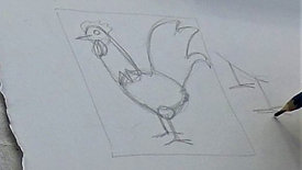 OUTLINE: rooster