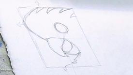 OUTLINE: black cockatoo