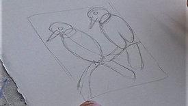 OUTLINE: 2 kookaburras