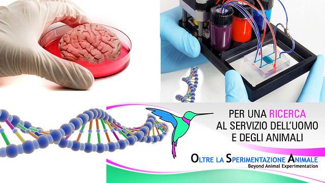 OSA Oltre la Sperimentazione Animale