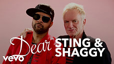 Dear Sting & Shaggy
