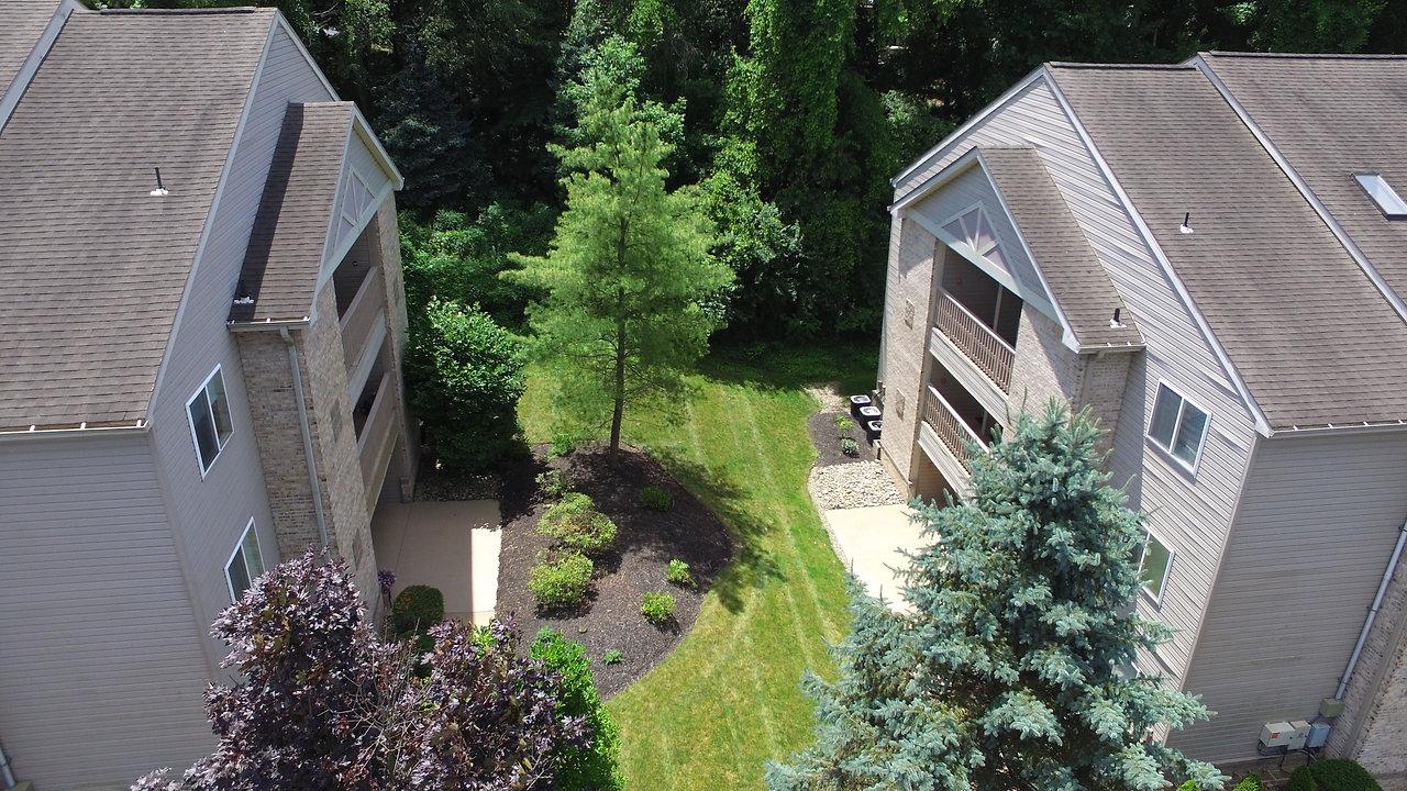 Birds Eye View of Lakemont Gardens