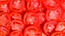 Tomatenscheiben / Tomato Slices