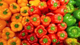 KKS Paprikawürfel / Pepper Cubes
