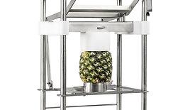 Ananasschäler Aufbau / Pineapple Peeler Assembly