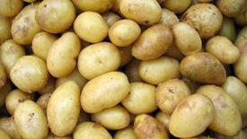 Kartoffelwürfel / Potato Cubes
