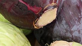 Weißkohl in eckige Blättchen (15mm) / White Cabbage in Square Leaves (15mm)