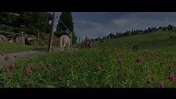Shavina - Ponyreiten und Wandern mit Ponys