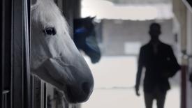 Centre Equestre de Dole | Ici vous n'êtes plus seul !