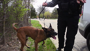 Butler Township Police Dept. WEB VIDEO