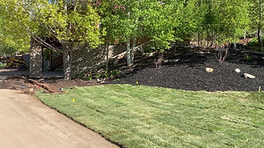 Completed This Landscape Project...check it out!