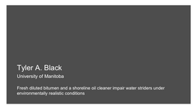 Fresh diluted bitumen and a shoreline oil cleaner impair water striders under environmentally realistic conditions