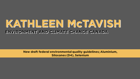 New Draft Federal Environmental Quality Guidelines; Aluminium, Siloxanes (D4), Selenium